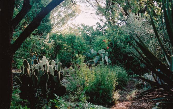 le jardin d'aujargues