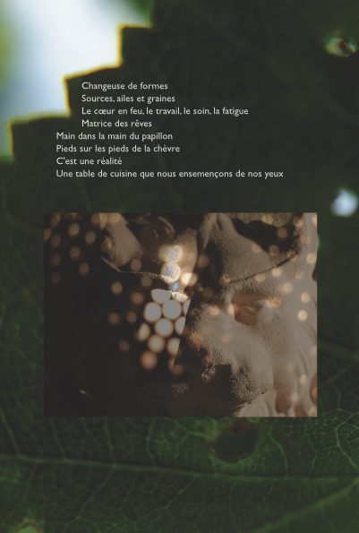 poeviv-page058