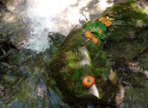 mandala comestible pomme rivière